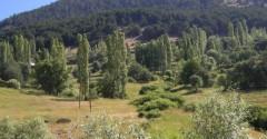 Sivas Merkez Beştepe ve Harmancık Köyleri